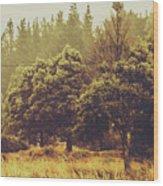 Retro Rural Tasmania Scene Wood Print