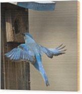 Returning Home Wood Print