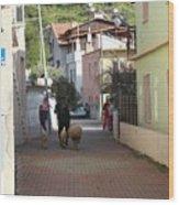 Returning Home With Sheep And Lambs In Bozburun Wood Print
