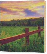 Retzer Nature Center - Sunset Over Field Wood Print