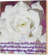 Revelation 3 5 Wood Print
