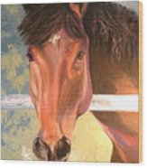 Reverie - Quarter Horse Wood Print