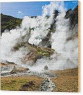 Reykjadalur Geothermal Area In Iceland Wood Print