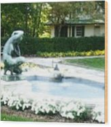 Reynolda Fountain Wood Print