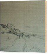 Rfb0215-2 Wood Print