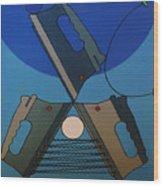 Rfb0904 Wood Print