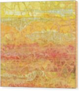 Rhapsody Of Colors 30 Wood Print by Elisabeth Witte - Printscapes