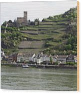Rhine Castle And Terraced Vineyards Wood Print