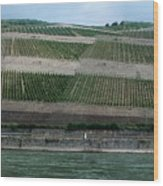Rhine Valley Vineyards Panorama Wood Print