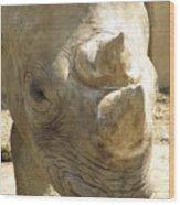 Rhino Closeup Wood Print