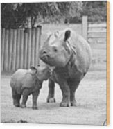 Rhino Mom And Baby Wood Print