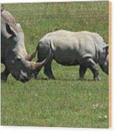 Rhino Mother And Calf - Kenya Wood Print