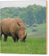 Rhino On The Hilltop Wood Print
