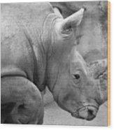 Rhino Profile Wood Print