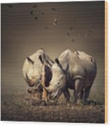 Rhino's With Birds Wood Print