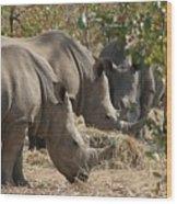 Rhinos,  Zambia Wood Print