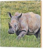 Rhinosceros Wood Print