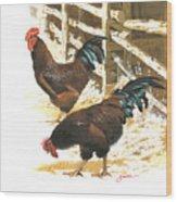 Rhode Island Reds Wood Print