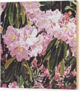 Rhodo Grove Wood Print by David Lloyd Glover
