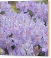 Rhododendron Floral Flowers Lavender Purple Prints Baslee Wood Print