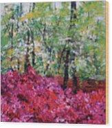 Rhododendron Glade Norfolk Botanical Garden 201821 Wood Print