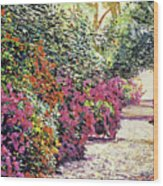 Rhododendron Pathway Exeter Gardnes Wood Print by David Lloyd Glover