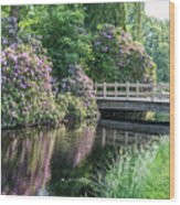 Rhododendrons And Wooden Bridge In Park Wood Print