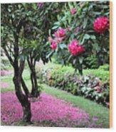 Rhododendrons Blooming Villa Carlotta Italy Wood Print