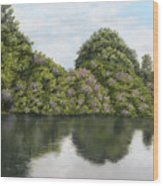 Rhododendrons By The River Wood Print