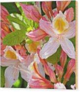 Rhododendrons Garden Floral Art Print Pink Rhodies Wood Print