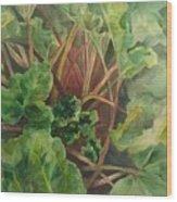 Rhubarb Spy Wood Print