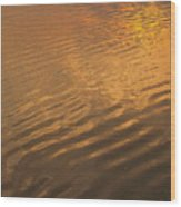 Rhythmic Sea At Hunting Island Wood Print