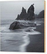 Rialto View Wood Print