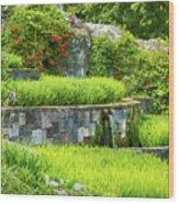 Rice Garden Wood Print
