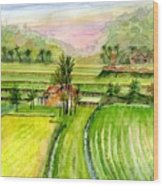 Ricefield Panorama Wood Print