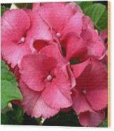 Rich Pink Wood Print