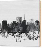 Richmond Virginia Skyline Wood Print