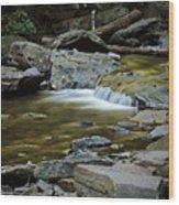 Ricketts Glen 2 Wood Print