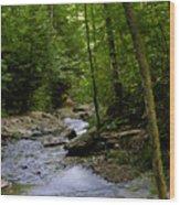 Ricketts Glen 3 Wood Print
