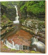 Ricketts Glen Adams Falls Wood Print