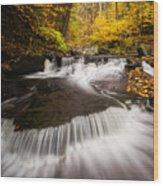 Ricketts Glen Autumn Flow Wood Print