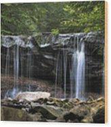 Ricketts Glen Oneida Wood Print