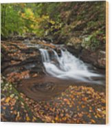 Ricketts Glen State Park Pennsylvania Autumn Waterfall Scenic Wood Print