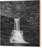 Ricketts Glen Waterfall Wood Print