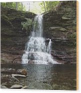 Ricketts Glen Waterfall Wood Print