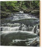 Ricketts Glen_061414_0097 Wood Print