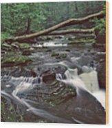 Ricketts Glenn Falls 007 Wood Print