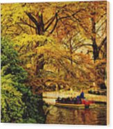 Ride On The Boat Wood Print