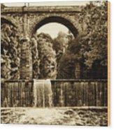 Ridge Avenue Falls Along The Wissahickon Creek Wood Print