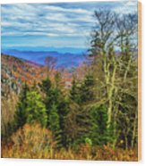 Ridge Junction Wood Print